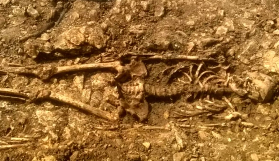 st leonards skeleton