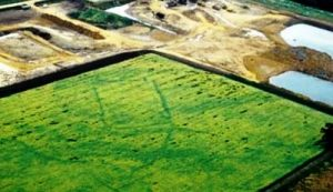 bronze age field systems in welland valley